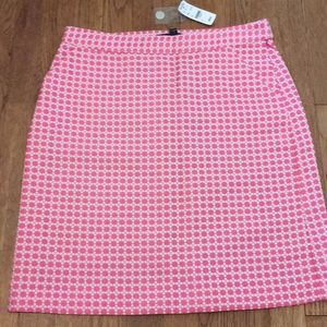 Pink and White Brooks Brothers Skirt Size 6 BNWT
